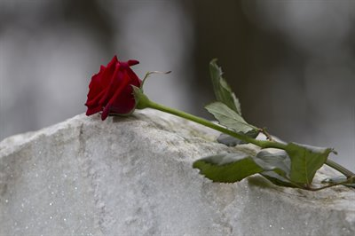 Grief blog.Rose on tombstone.jpg
